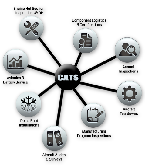 service-chart2